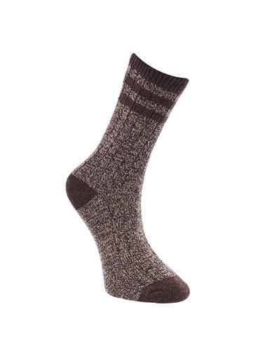 Altınyıldız Classics Çorap Kahve